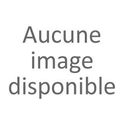 Dame Jeanne - Decoration Vintage - Transparente - KDJ055